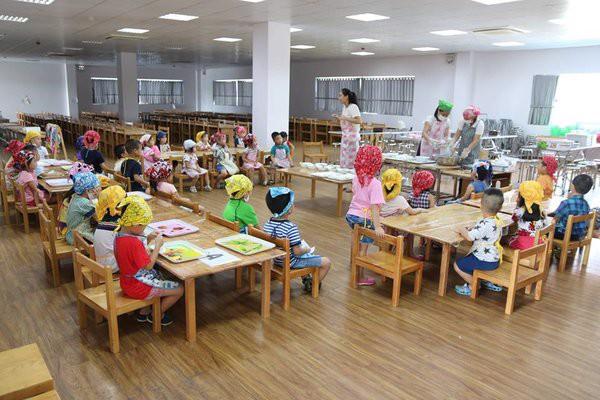 Các hoạt động tại trường mầm non Papakidz